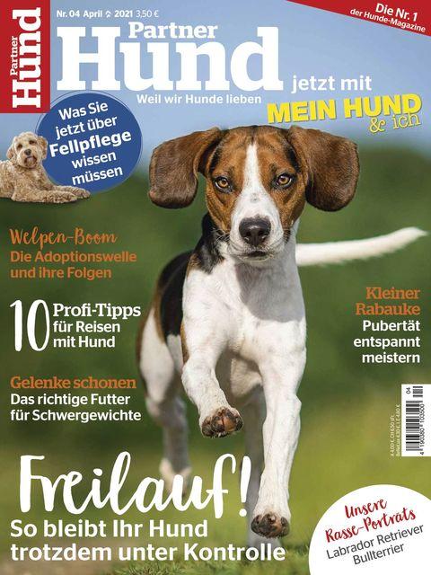 Partner Hund Ausgabe 04/2021