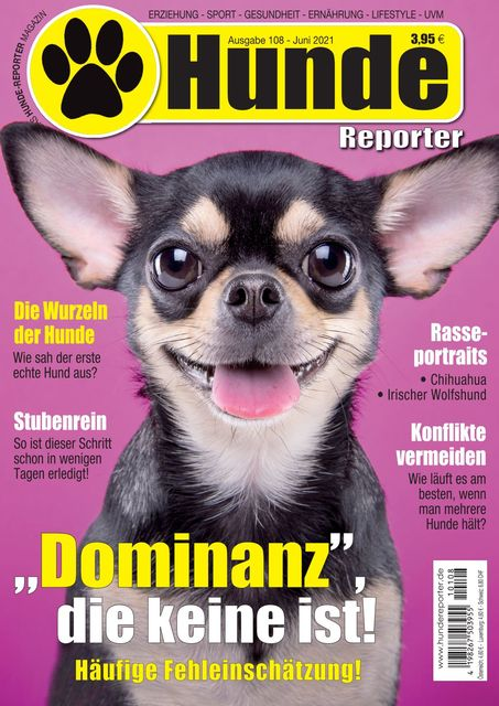 Hundereporter Nr. 108