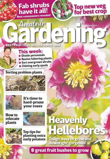 Amateur Gardening Magazine 2021-01-12