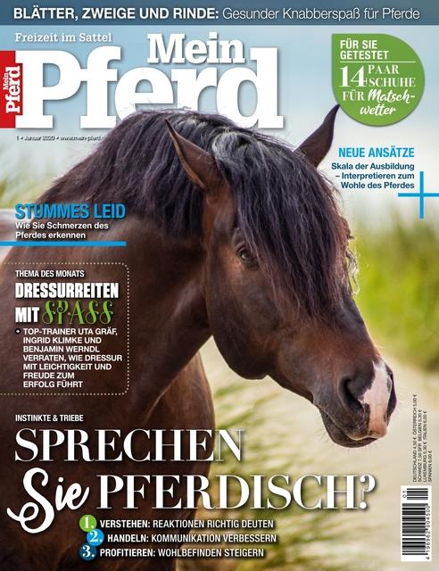 Pferdesport-Profi Cavaletti 55 x 44 x 22 cm