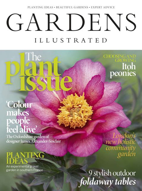 Gardens Illustrated issue 07/2020