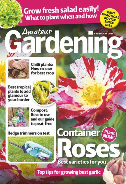 Amateur Gardening Magazine 2021-02-02