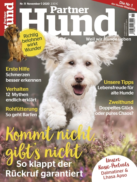 Partner Hund Ausgabe 11/2020