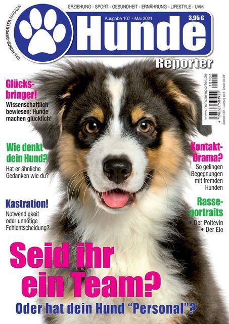 Hundereporter Nr. 107