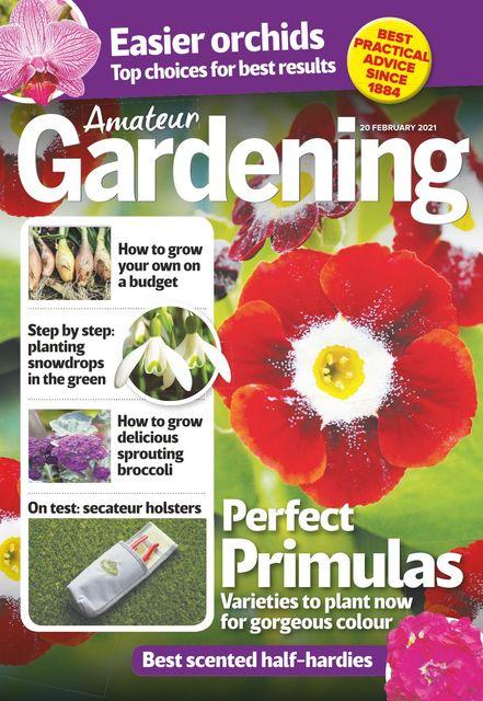 Amateur Gardening Magazine 2021-02-16