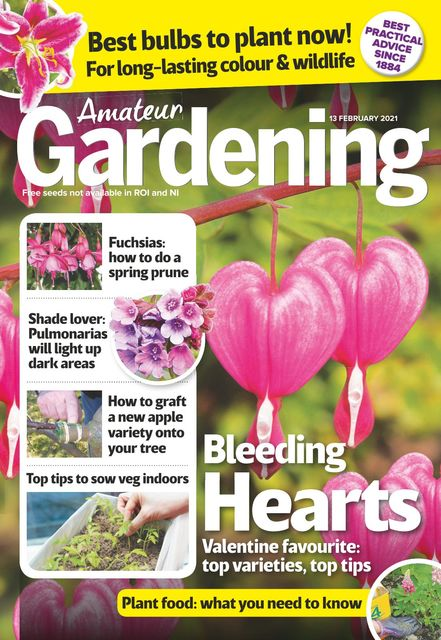 Amateur Gardening Magazine 2021-02-09