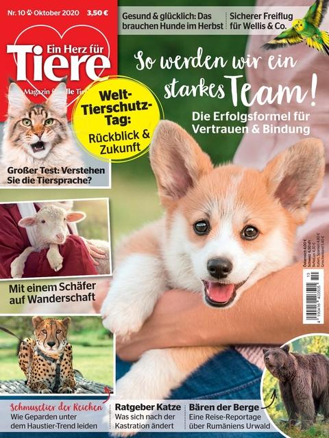 Ein Herz für Tiere Ausgabe 10/2020