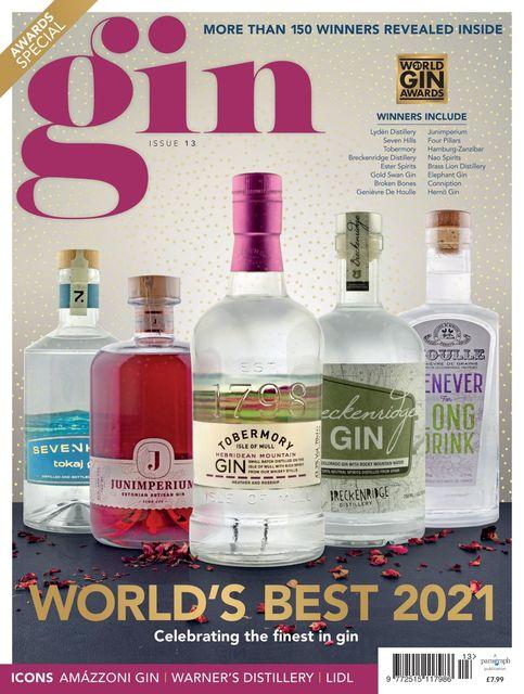 Gin Magazine Issue 13