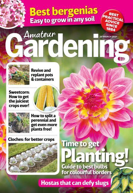 Amateur Gardening Magazine 2021-03-16