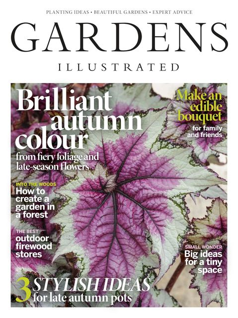 Gardens Illustrated issue 12/2020