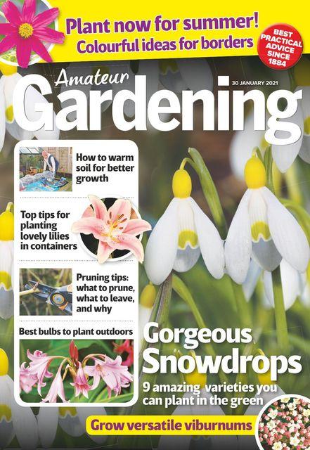Amateur Gardening Magazine 2021-01-26